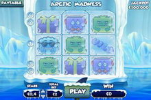 Arctic Madness game image