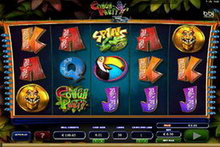 Conga Party Slot game image