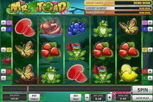 Mr Toad Slot game image