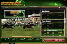 Premier Racing game image