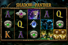 Shadow of the Panther game image